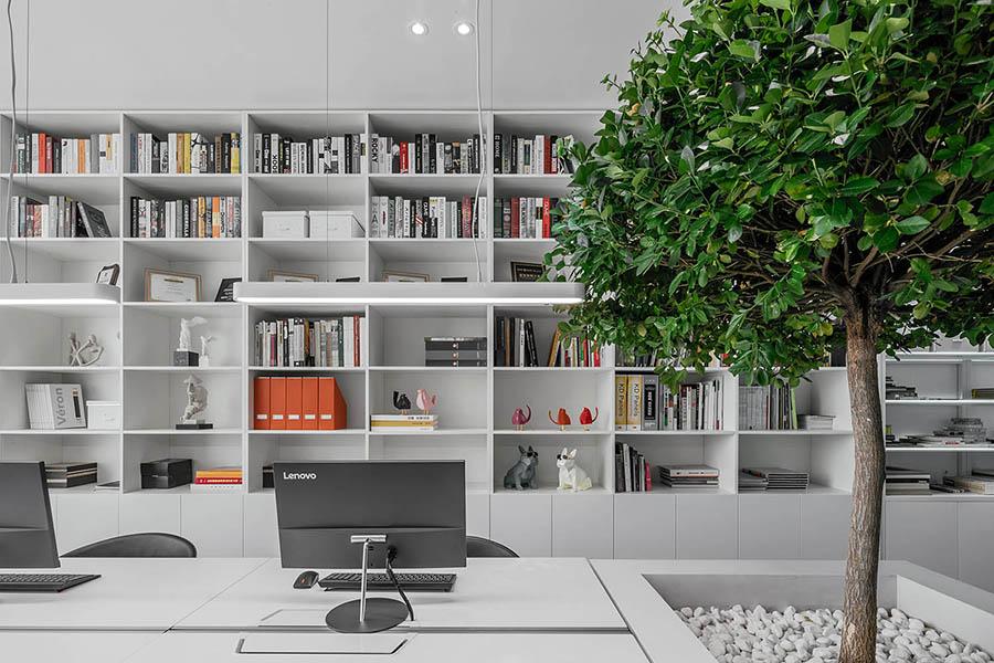 thiết kế văn phòng có cây xanh